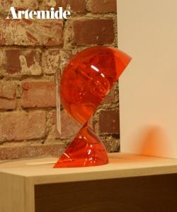 Dalu pomarańczowa (ekspozycja)