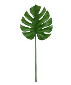 Liść Monstery dekoracyjny liść skandynawski