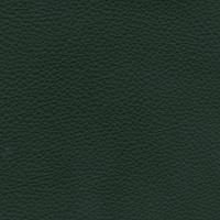 skóra Exklusiv zielony 1874
