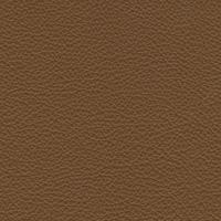 skóra Exklusiv brązowy 1876
