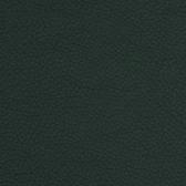 Zenith skóra 9018
