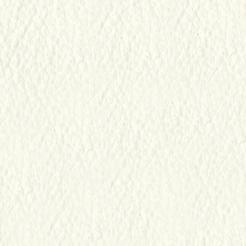 skóra Tender 617